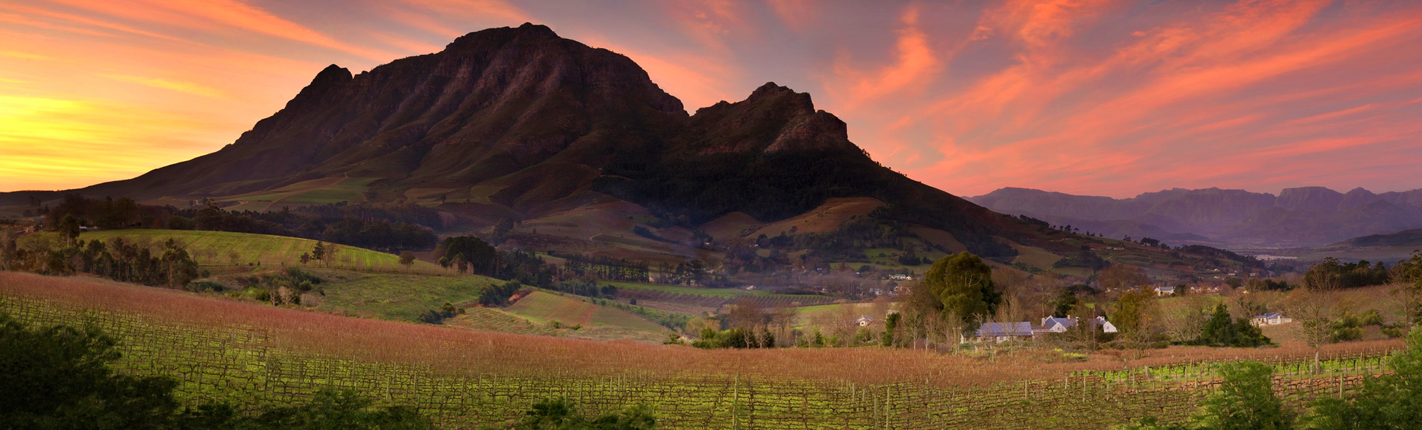 The Cape Winelands Award-winning Wine Estates & Gastronomy Capital of South Africa